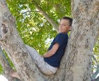 Muchacho en un árbol Imagen de archivo libre de regalías