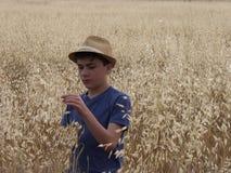 Muchacho en un campo de la hierba amarilla imágenes de archivo libres de regalías
