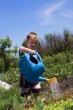 Muchacho en un jardín Imagen de archivo libre de regalías