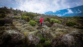 Muchacho en vacaciones rojas del extremo de la aventura de la chaqueta fotos de archivo