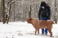 Muchacho enrrollado de Emo y su perro Imagen de archivo