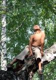 Muchacho feliz en árbol de abedul Fotos de archivo
