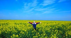 Muchacho feliz en prado Fotografía de archivo libre de regalías