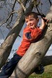 Muchacho feliz, niño que sube en un árbol Foto de archivo