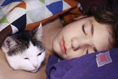 Muchacho hermoso del preadolescente con dormir del gato Imagen de archivo libre de regalías