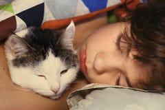 Muchacho hermoso del preadolescente con el gato que abraza en cama Imagen de archivo