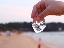 Muchacho hermoso del preadolescente con las medusas Fotos de archivo