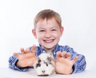 Muchacho joven con el conejillo de Indias Fotografía de archivo libre de regalías