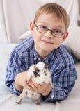 Muchacho joven con el conejillo de Indias Foto de archivo