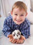 Muchacho joven con el conejillo de Indias Fotos de archivo