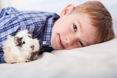 Muchacho joven con el conejillo de Indias Imagen de archivo libre de regalías