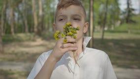 Muchacho joven con las flores del diente de león que esperan para dar un ramo para la persona Reconstrucci?n al aire libre almacen de metraje de vídeo