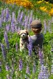 Muchacho joven con su perrito Foto de archivo libre de regalías