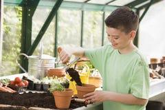 Muchacho joven en el invernadero que pone el suelo en crisol Imágenes de archivo libres de regalías