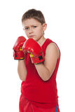 Muchacho joven en guantes de boxeo Fotografía de archivo libre de regalías