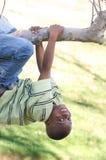 Muchacho joven en un árbol Foto de archivo