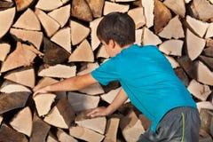 Muchacho joven que apila la leña en la vertiente fotos de archivo