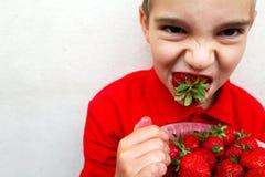 muchacho joven que come una fresa madura Fotos de archivo libres de regalías
