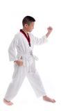Muchacho joven que entrena a la acción del Taekwondo aislada Imagen de archivo libre de regalías