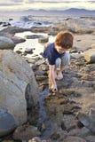 Muchacho joven que explora en la playa Imagen de archivo libre de regalías