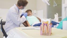 Muchacho joven que hace que sus dientes sean examinados por el dentista, foco selectivo en modelo del diente metrajes