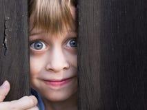 Muchacho joven que mira a través de barrera de madera Foto de archivo