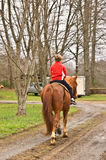 Muchacho joven que monta un caballo Foto de archivo