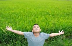 Muchacho joven que se coloca en el campo del arroz Foto de archivo libre de regalías