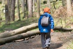 Muchacho joven trecking en un bosque Fotografía de archivo