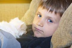 Muchacho joven y alegre con un gato blanco en el sofá que mira la cámara Imagen de archivo