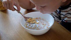 Muchacho lindo 4 años que comen copos de maíz del desayuno con leche en la tabla en casa metrajes