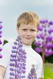 Muchacho lindo en flores del lupine. Fotos de archivo