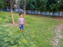 Muchacho lindo en un parque Imagenes de archivo