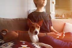 Muchacho lindo joven que juega la consola del videojuego asentada en un sofá con cierre del perrito del perro del basenji en sala fotos de archivo