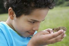 Muchacho observando el sapo al aire libre Fotos de archivo libres de regalías