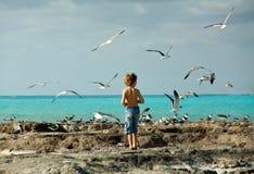 Muchacho por la costa Imagen de archivo libre de regalías