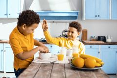 Muchacho pre-adolescente agradable que quiere dar una palmada a su hermano en el desayuno Fotos de archivo libres de regalías