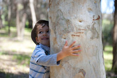 Muchacho que abraza el árbol fotos de archivo