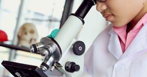 Muchacho que ajusta el microscopio según el experimento almacen de video