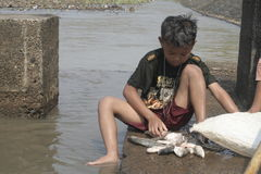 Muchacho que busca pescados en el río fotografía de archivo