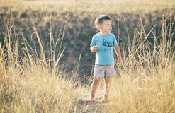 Muchacho que camina en el campo descalzo Imagen de archivo libre de regalías