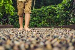 Muchacho que camina en un pavimento de adoquín texturizado, Reflexology Piedras del guijarro en el pavimento para el reflexology  Fotos de archivo libres de regalías