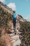 Muchacho que camina solamente en las montañas Fotografía de archivo