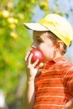 Muchacho que come la manzana Imagenes de archivo