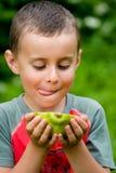 Muchacho que come la papaya Imagen de archivo libre de regalías