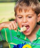 Muchacho que come la torta Imágenes de archivo libres de regalías