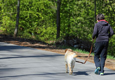 Muchacho que corre abajo del camino con su perro Imagen de archivo