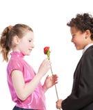 Muchacho que da una rosa a una muchacha Imagen de archivo libre de regalías
