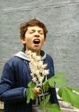 Muchacho que huele ey de las flores de la castaña de la fiebre Imagen de archivo libre de regalías