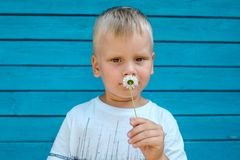 Muchacho que huele una flor foto de archivo